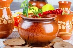 Tradycyjni wieśniaka domu gulyas z surowymi warzywami i pikantność w glinianych garnkach na drewnianym stole, fotografia stock