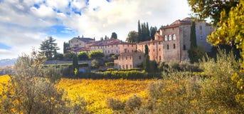 Tradycyjni wiejscy krajobrazy Tuscany Chianty winogradu region Ja Obraz Royalty Free