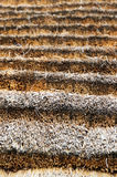 Tradycyjny afrykanin pokrywał strzechą dachowy składać się z zbierać trawy Fotografia Stock