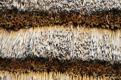 Tradycyjny afrykanin pokrywał strzechą dachowy składać się z zbierający Grasse Zdjęcia Stock