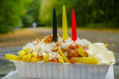 Tradycyjny Belgijski fast food, smażący grula układy scaleni z mayonna zdjęcia royalty free