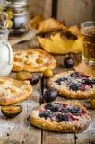 Tradycyjny czecha tort z śliwkami i przycina Zdjęcie Royalty Free