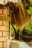 Tradycyjny dom w wyspie Mucura, Kolumbia Obrazy Royalty Free