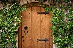 Tradycyjny drewniany drzwi Zdjęcia Stock
