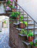 Tradycyjny Europejski Śródziemnomorski architektoniczny styl w mieszkaniowych domach przy latem i ulicach Flowerpots stoją na th Zdjęcia Royalty Free
