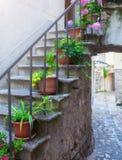 Tradycyjny Europejski Śródziemnomorski architektoniczny styl w mieszkaniowych domach przy latem i ulicach Flowerpots stoją na th Obraz Royalty Free