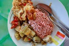 Tradycyjny Jawajski jedzenie zawiera czerwonych ryż z oberżyny i jajka dishe obrazy stock