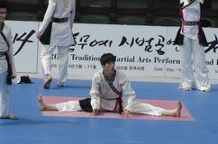 Tradycyjny Koreański sztuka samoobrony występ i doświadczenia wydarzenie pokazujemy Fotografia Stock