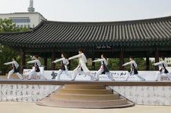 Tradycyjny Koreański sztuka samoobrony występ i doświadczenia wydarzenie pokazujemy Obraz Stock