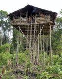 Tradycyjny Koroway dom umieszczający w drzewie Zdjęcia Royalty Free