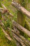 Tradycyjny kratownica fechtunek Fotografia Stock