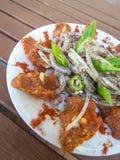 Tradycyjny libański karmowy kibbeh nayyeh Zdjęcia Stock