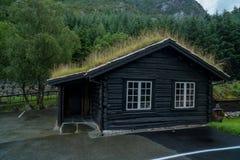 Tradycyjny Norweski drewniany dom typowy domowy norweg Typowy norwegu dom z trawą na dachu zdjęcie stock