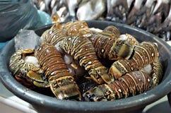Tradycyjny owoce morza rynku pokaz w Tegucigalpa talerz pełno homarów ogony obraz royalty free