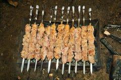 tradycyjny piec na grillu mięso Fotografia Stock