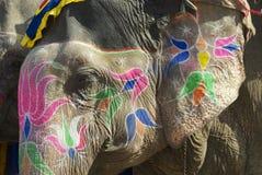 Tradycyjny słonia makeup w Jaipur, Rajasthan, India Obrazy Stock