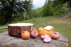 Tradycyjny shepard jedzenie z cebulami i serem słuzyć w mo Obrazy Stock