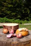 Tradycyjny shepard jedzenie z cebulami i serem słuzyć w mo Obraz Stock