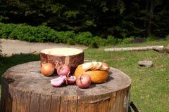 Tradycyjny shepard jedzenie z cebulami i serem słuzyć w mo Zdjęcie Royalty Free