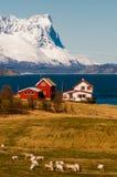 Tradycyjny szalunku dom przy wybrzeżem n Lapland Zdjęcie Royalty Free