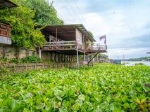 Tradycyjny tajlandzki domu styl blisko rzeki w Tajlandia z pięknym wodnego hiacyntu niebieskim niebem obraz stock