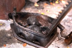 Tradycyjny węgla drzewnego żelazo fotografia royalty free
