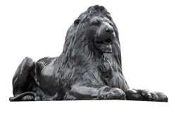trafalgar查出的狮子雕塑的正方形 免版税库存图片