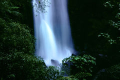 Trafalgar falls, Dominica. The base of the falls in Dominica, West Indies stock image