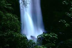 Trafalgar falls, Dominica Stock Image