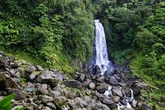 Trafalgar Falls, Dominica. Lesser Antilles