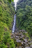 Trafalgar Falls, Dominica. Lesser Antilles royalty free stock photography