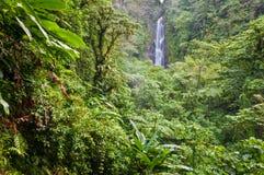 Trafalgar Falls, Dominica. Trafalgar Waterfalls, Dominica - national showplace royalty free stock photography