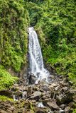 Trafalgar falls, famous waterfall in Dominica, Caribbean. Bright and colorful image with stunning waterfall, green nature landscape and rocks. Trafalgar Falls in royalty free stock image
