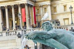 trafalgar london фонтана квадратное Стоковое Изображение RF