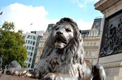 Trafalgar-Platz-Löwen Stockfotografie