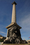Trafalgar Square Stock Photography