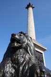 Trafalgar Square. This is the famous monument of the Trafalgar Square in London Stock Images