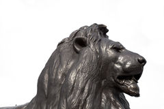 Trafalgar Square Lion Head - London Royalty Free Stock Photos