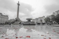 Trafalgar Square Stock Photography