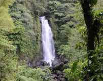 Trafalgar waterfall, Dominica Royalty Free Stock Photos