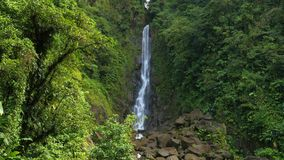 Trafalgar Waterfalls. In the rain forest, Dominica stock video footage