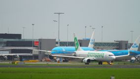 Traffic at Amsterdam airport. AMSTERDAM, THE NETHERLANDS - JULY 25, 2017: Boeing 777 Royal Dutch Airlines KLM and Boeing 737 Transavia taxiing on apron, Shiphol stock video footage