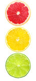 Traffic of citruses Royalty Free Stock Photo