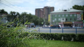 Traffic in the city. On a sunny day. Blurred background stock footage