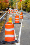 Traffic Cones along a Forest Road royalty free stock image