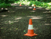 Traffic cones defining route to run through the wood. Leisure activity stock photos