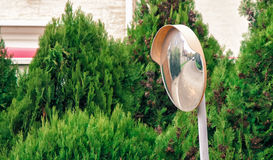 The traffic curve mirror. With green plants on background Royalty Free Stock Photo