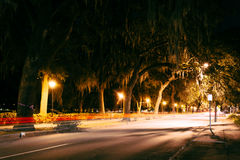 Traffic on Drayton Street and overhanging oak trees on Drayton S. Treet at night in Savannah, Georgia Stock Photography