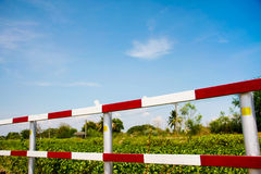 Traffic fence Stock Images