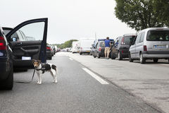 Traffic jam on motorway in germany Royalty Free Stock Photography
